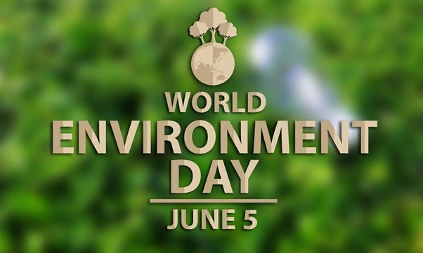 What Would Be The Best Slogan For World Environmental Day Quora
