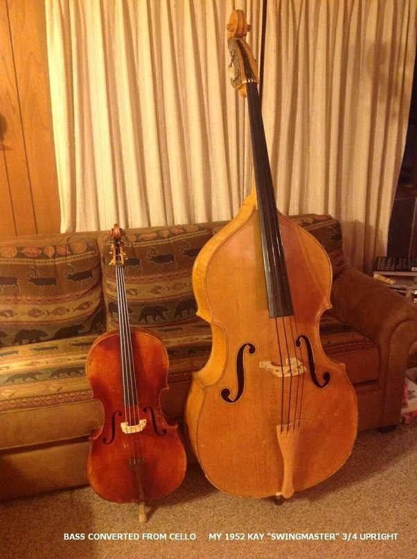 what are some double bass facts quora. Black Bedroom Furniture Sets. Home Design Ideas