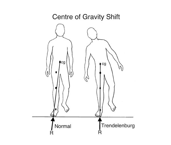what u0026 39 s the difference between the centre of gravity and the centre of mass