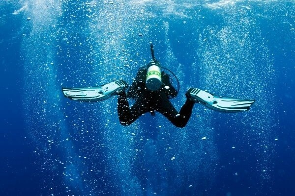 Why is it dangerous for a scuba diver to surface quickly ...
