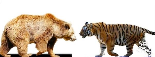 Decorative Arts Efficient Pr Lead Antique Lion And Tiger Other Antique Decorative Arts