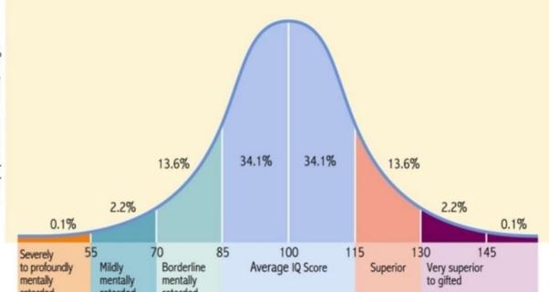 Iq Score
