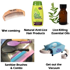 get rid of head lice in black hair