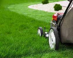 What oil type is best to use for my lawn mower? - Quora