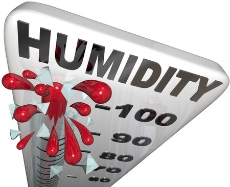 When We Talk About High Humidity The Common Effects Here Are Heat Stress Exhaustion And Even Stroke Which Is Really Critical Most Especially To