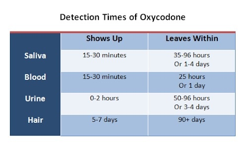 How Long Does Oxycodone Stay In The System Quora