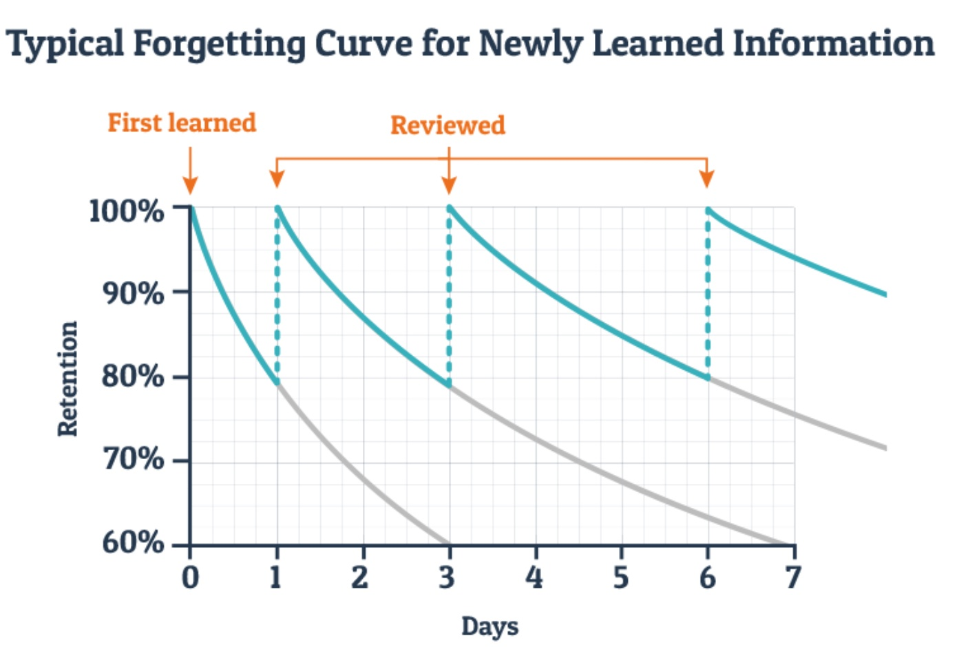 Forgetting curve after implementing Spaced Repetition