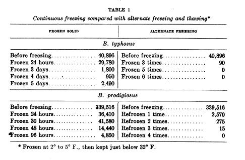 Examples of Heat-Resistant Bacteria