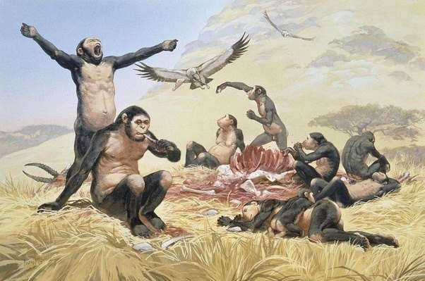 a history of practicing human and animal sacrifices There is a debate among scholars as to whether human sacrifices were television history pulling in to sacrifices, both animal and human.