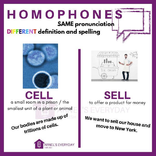 What are some homophone words with their meanings and example