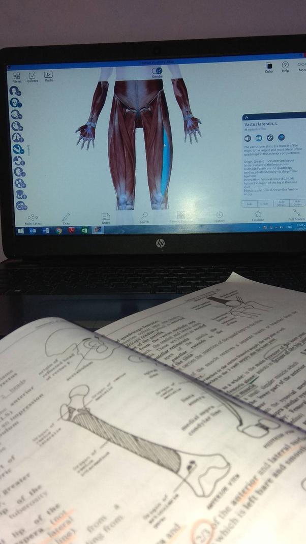 دراسة الطب البشري  دراسة الطب  الطب