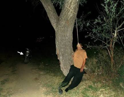 Is it true that those who hang themselves in the Aokigahara forest ...