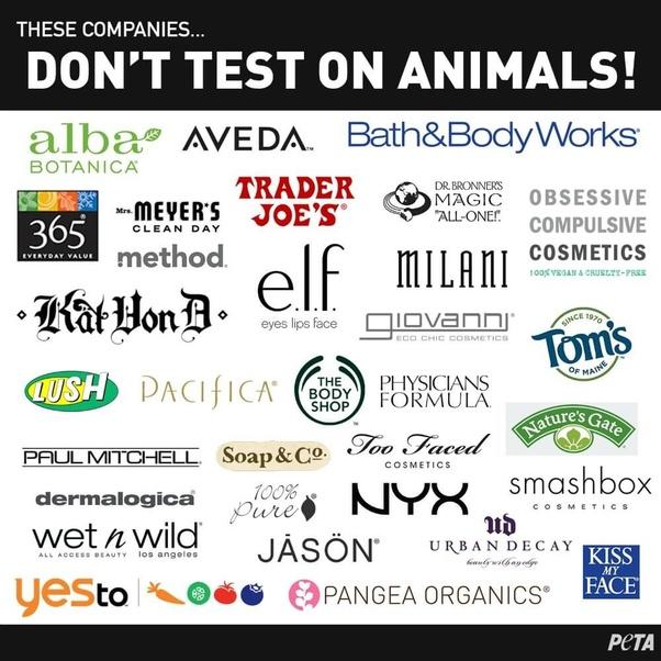 No Animal Testing Makeup Companies No Animal Testing Makeup Companies