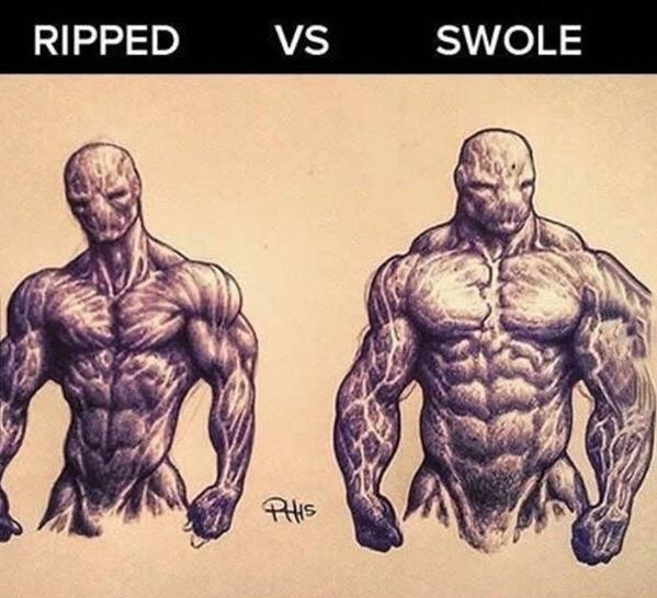 What Is A Bodybuilders Physique Compared To A Powerlifters Quora