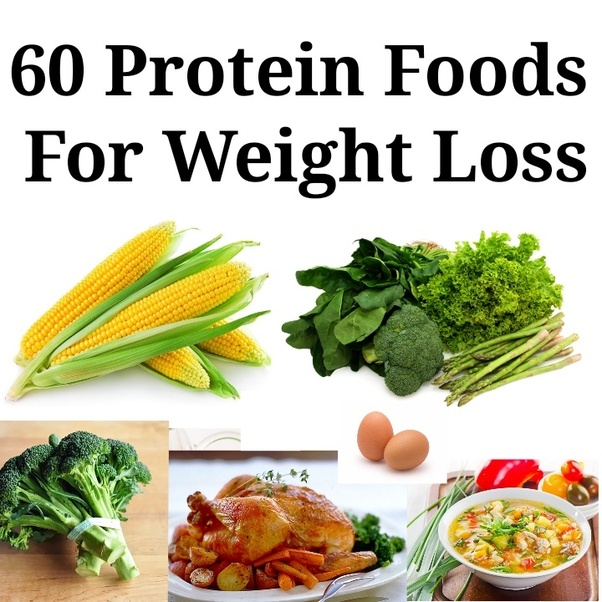 how long to lose weight high protein diet