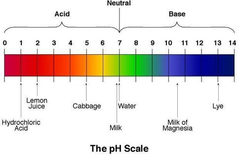 what is the ph of pineapple juice and what is its colour on the ph scale quora. Black Bedroom Furniture Sets. Home Design Ideas