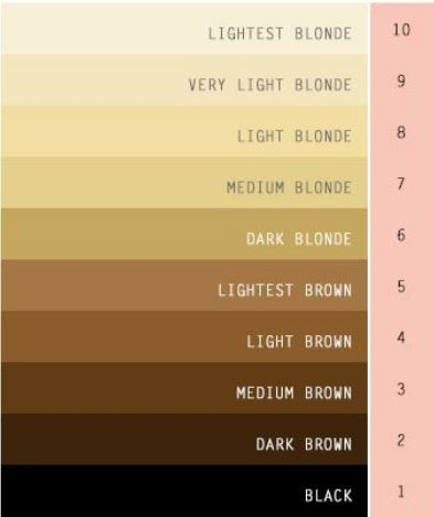 What S The Difference Between Very Dark Blonde And Light