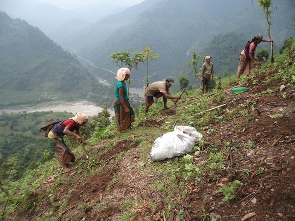 What are the advantages and disadvantages of Shifting Cultivation