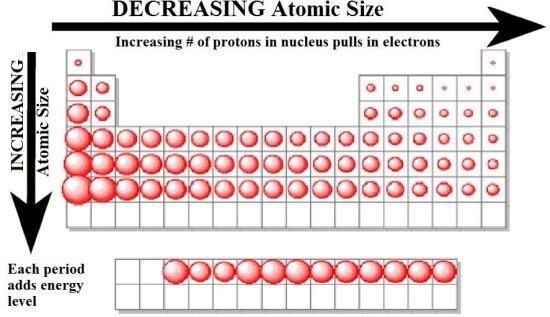 The More Protons In The Nucleus Of Atom, The Tighter They Pull The  Electrons Inward. Therefore, Atom Size Decreases Along A Period.