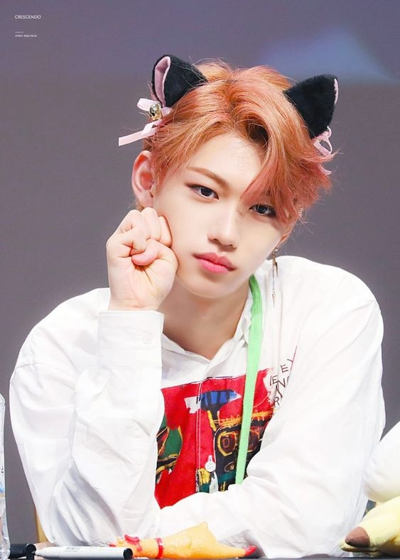 Why does Felix (Stray Kids) have little to no lines in ...