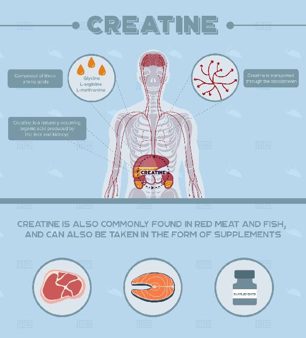 What Is Creatine And What Is It Used For Quora