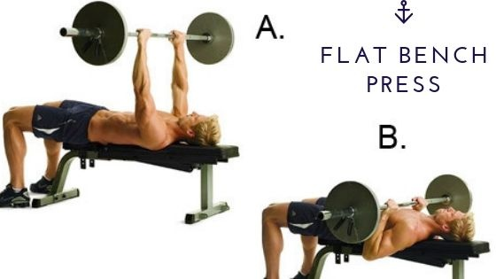 Terrific Which Is Better Incline Bench Or Flat Bench Quora Gmtry Best Dining Table And Chair Ideas Images Gmtryco