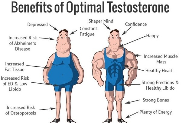 How Can A Man Increase His Testosterone Level