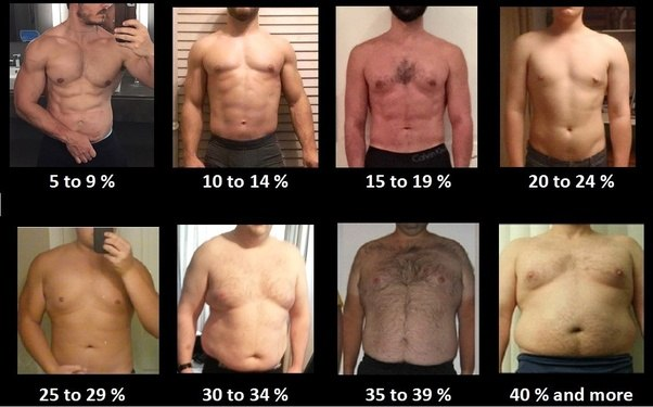 How to increase 40 body fat in 4 weeks quora