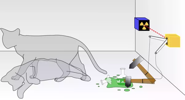 ... First Of All Let Me Clear That Schrodinger Did Not Have Any Cat On  Which He Was Doing Some Experiments. Basically, Its A Case To Demonstrate  Some Of The ...