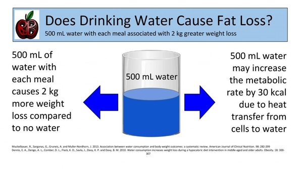 Does increasing your water intake help you lose weight? - Quora