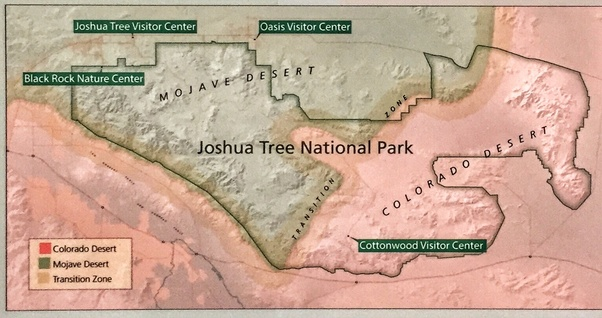 Why do so many people go missing in Joshua Tree? - Quora