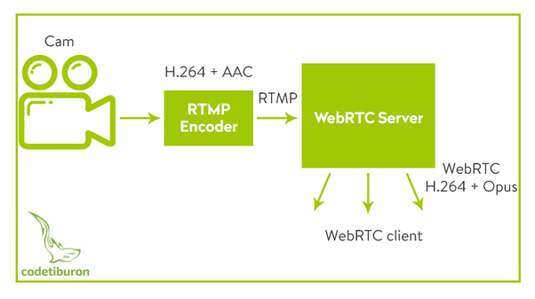 The Real Time Streaming Protocol (RTSP)