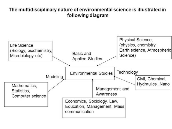What Is Meant By The Multidisciplinary Nature Of Environmental