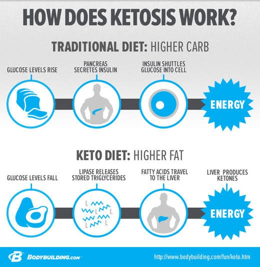 how the ketogenic diet works how stuff works