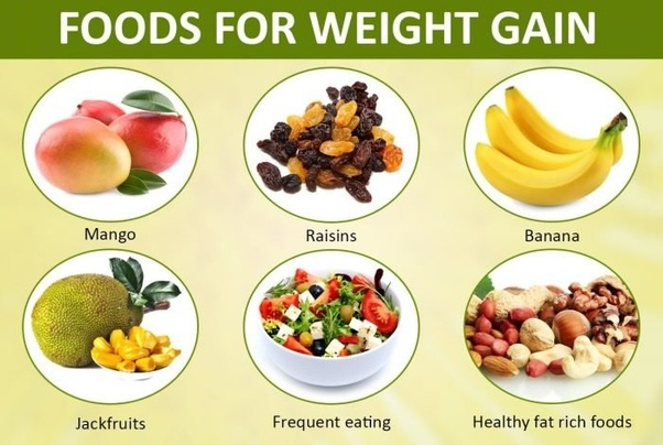 Wat Are The Best Pills To Get Fat Soon Quora