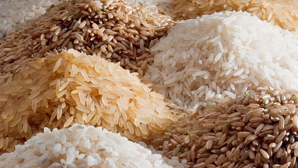 How to start rice export business in india - Quora