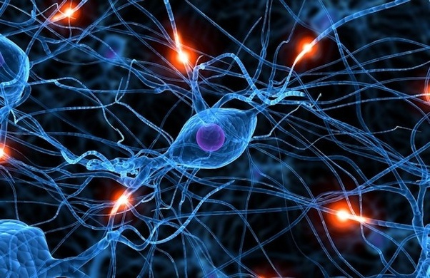 What is the best way to train my brain to work fast? - Quora