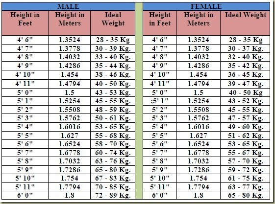ideal and weight chart Adult height
