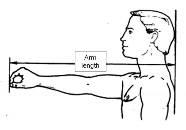 9f56ff98fd7 How to get longer arms - Quora