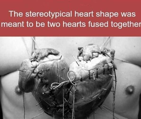 Should Heart Be The Symbol Of Love Quora
