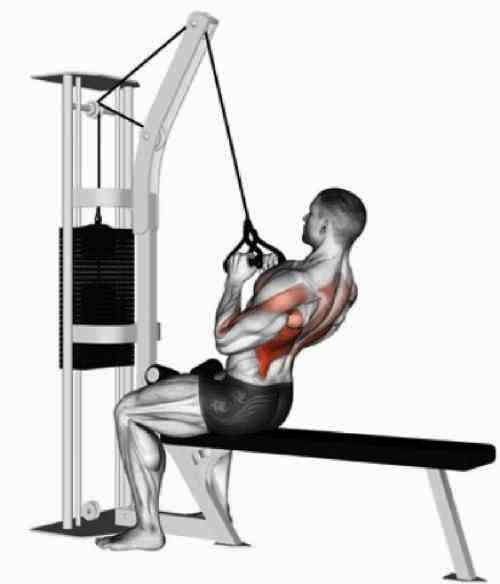 V-Bar pulldown, back workout for a beginner