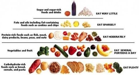 A vegetarian diet can significantly improve blood sugar levels and manage  type 2 diabetes, a