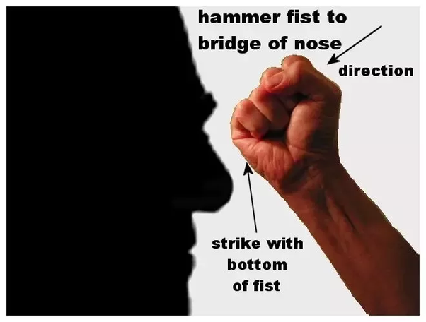 What When Is The Proper Use Of A Hammer Fist In Mma And How Does It Compare To A Typical Knuckle Punch It Seems Like It Would Be Less Effective