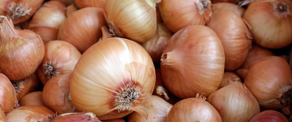 How to find a genuine buyers for fresh onions in export