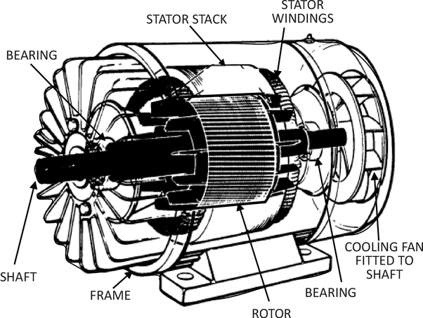 what are the parts of a squirrel-cage induction motor