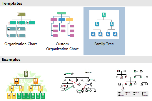 as family tree software edraw has the tools to make it easy to create a family tree chart of all the members in your family you can make it as simple or