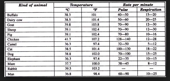 What Is The Natural Temperature Of A Human
