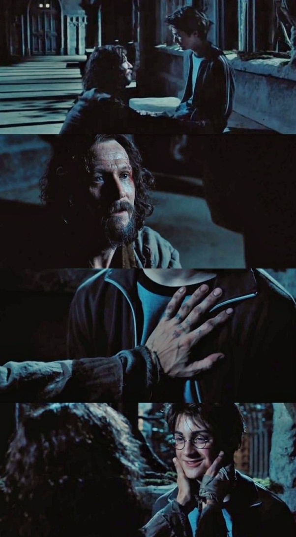 We Start Off With Hating Sirius And Then End Up Wanting Harry To Live Him Instead Of At The Dursleys Always Wanted A Proper Family For