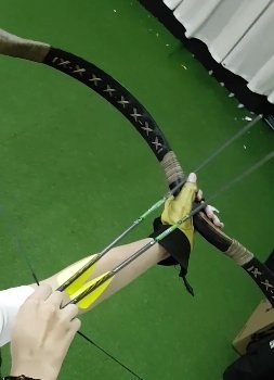 Do you prefer a recurve bow or a compound bow? - Quora
