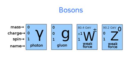 Z Boson What is gauge b...